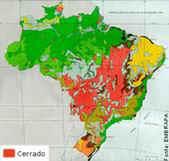 Vegetação Brasileira segundo IBGE